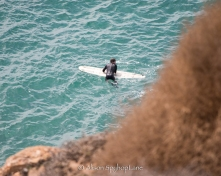 2018-03-18-paddler-sea-lion-cove-pt-dume-7590