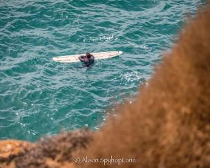 2018-03-18-paddler-sea-lion-cove-pt-dume-7591